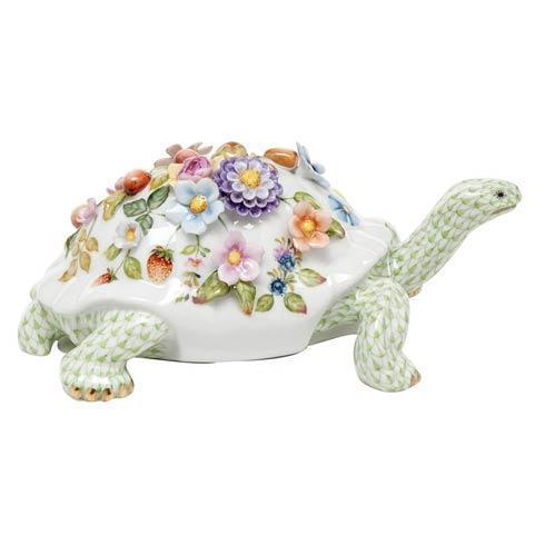 Blossoming Tortoise - Multicolor