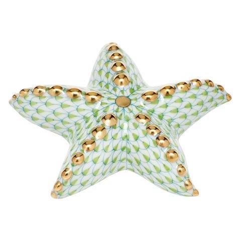 Puffy Starfish - Key Lime