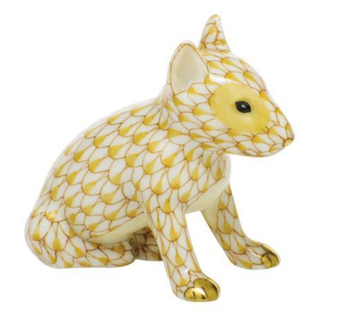 $275.00 English Bull Terrier Puppy-Butterscotch