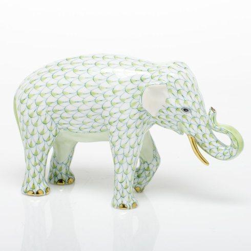 Asian Elephant - Key Lime