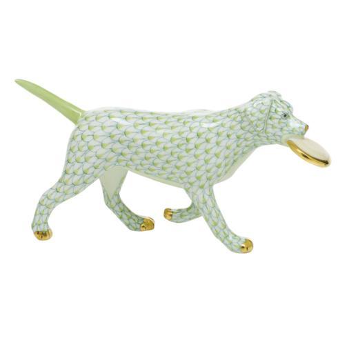 $395.00 Frisbee Dog - Key Lime
