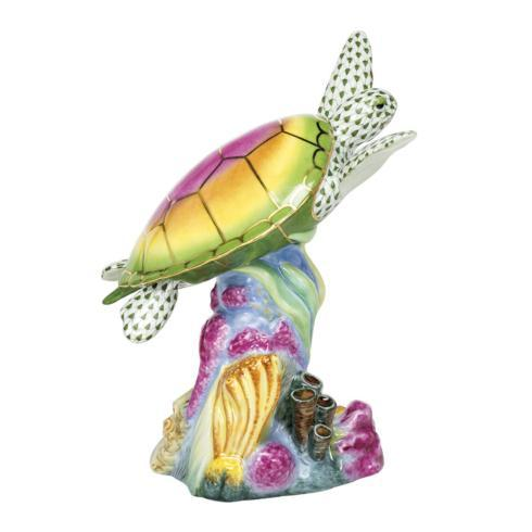 Sea Turtle with Coral