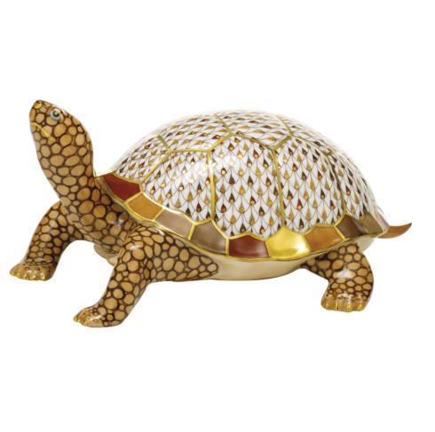 $3,475.00 Box Turtle