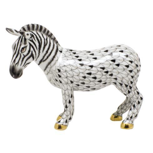 Zebra - Multicolor