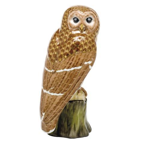 Brown Barred Owl - Multicolor