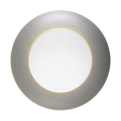 $142.00 Eclipse Gray Large Dinner Plate