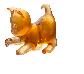 $209.00 Amber player mini kitten