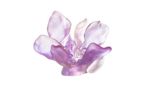 Violet Pink Flower