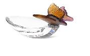 Mini Bowl Purple