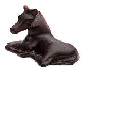 $195.00 Apaloosa mini foal