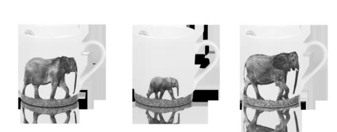 $306.00 Set of 3 Mugs - Trilogy In Africa