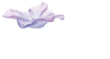 $260.00 Violet Flower