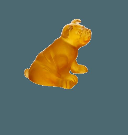 $203.00 Amber mini puppy