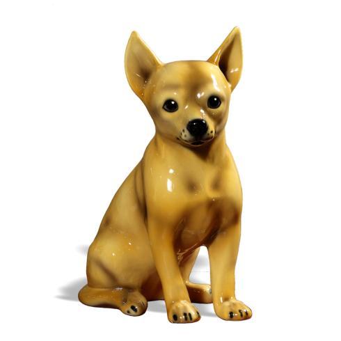 $168.00 Chihuahua