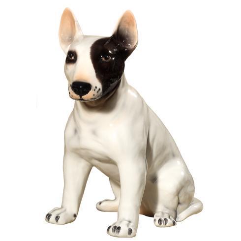 $270.00 Dog Bull Terrier