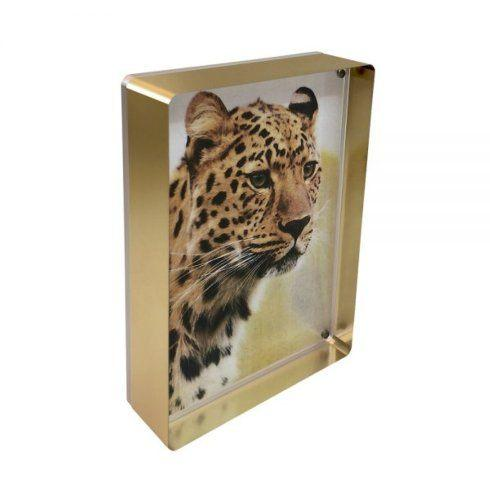 Canetti Design Group   Gold/Acrylic Block Frame 5x7 $70.00