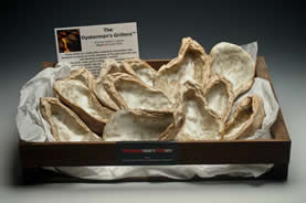 $96.00 OYSTERMAN GRILLERS