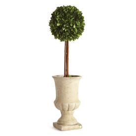 Napa Home & Garden   TOPIARY IN URN $84.00