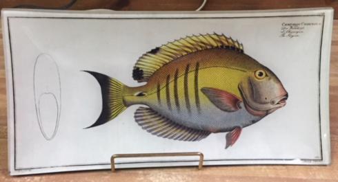 Housewares   Chatodon Platter $78.00
