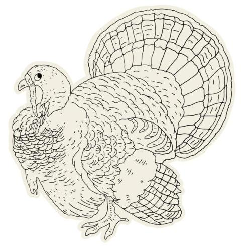 Hester and Cook   Coloring turkey placemat set 12 $29.00