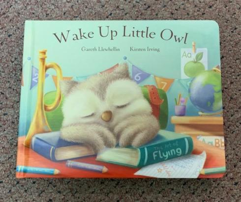 $16.00 Wake Up Little Owl