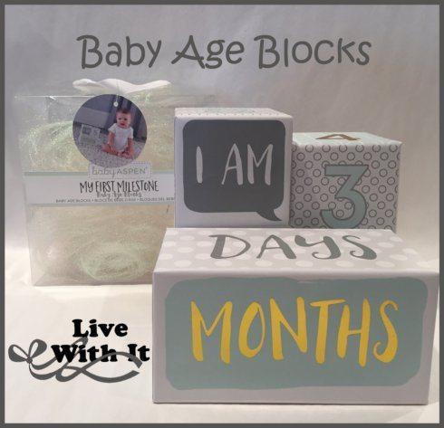 $18.00 Baby Age Blocks