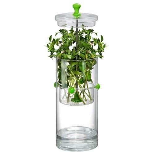 Artland  Simplicity Entertaining Glass Herb Keeper $28.00