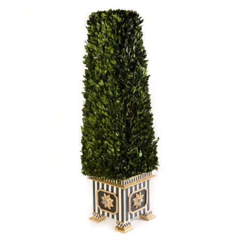 Boxwood Obelisk - Large image