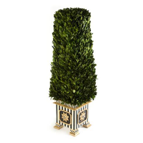 Boxwood Obelisk - Medium image