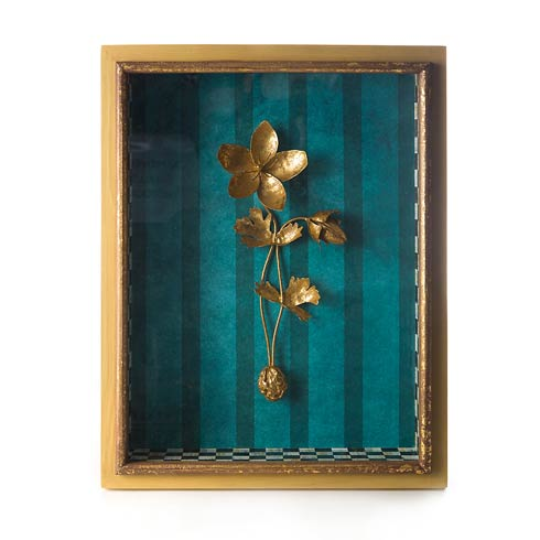 Shadow Box - Anemone collection with 1 products