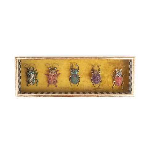 $250.00 Entomologist Shadow Box - Rectangular