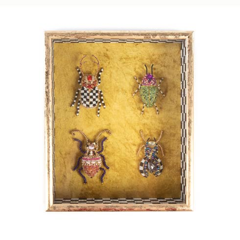 $198.00 Entomologist Shadow Box - Square