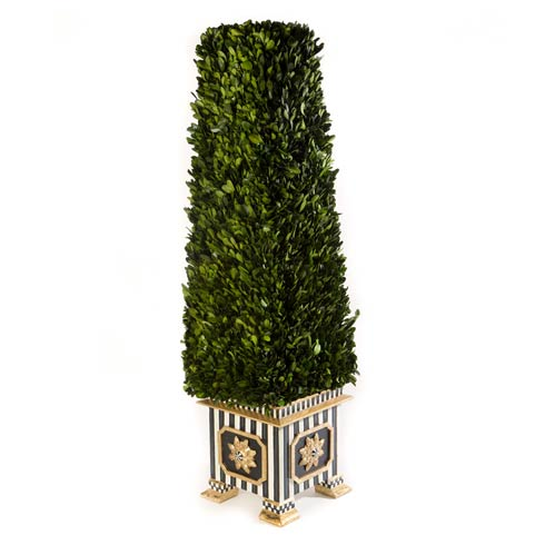 Boxwood collection with 1 products