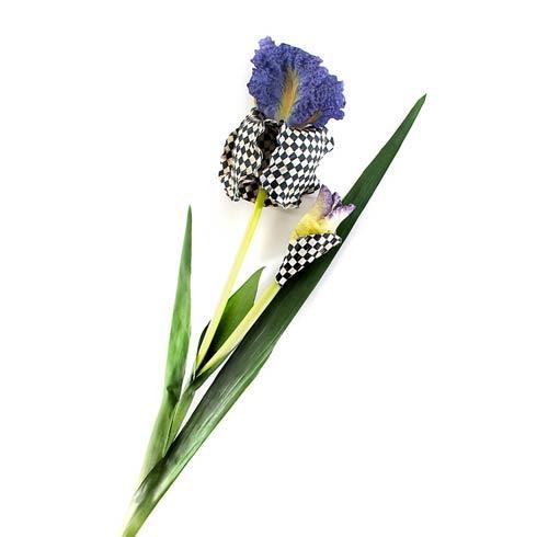 $18.00 Iris - Purple