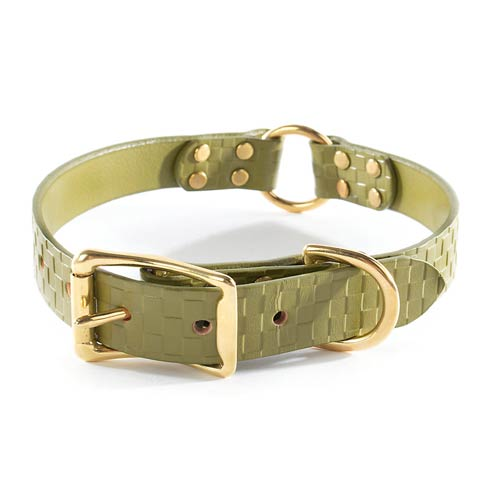 $98.00 Embossed Leather Collar - Green - Medium