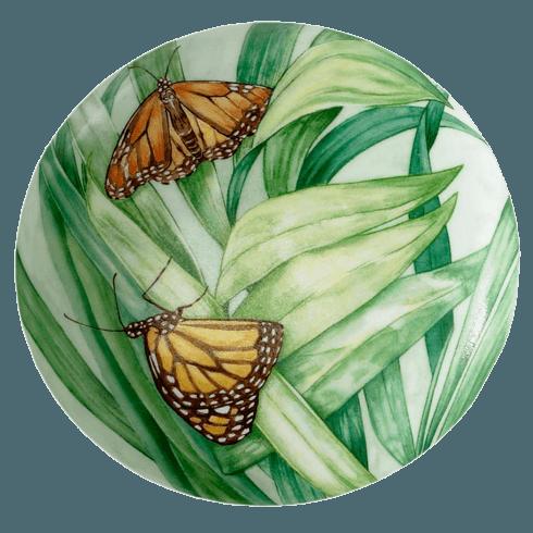 $55.00 Butterfly Box, Monarch