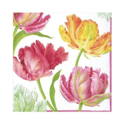Tulip Dance Paper Cocktail Napkins collection with 1 products