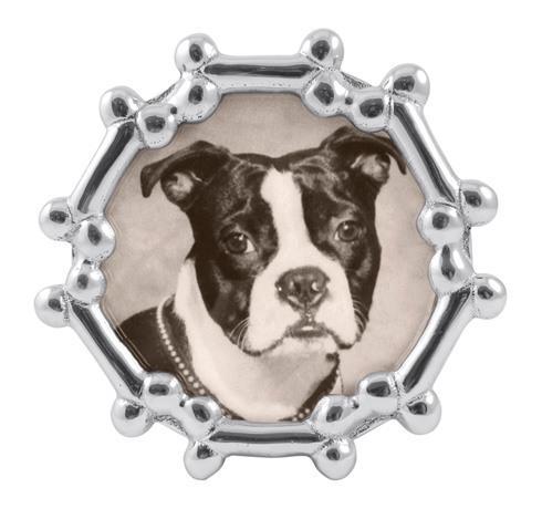 $42.00 Dog Bone Round Frame