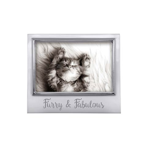 $49.00 FURRY & FABULOUS 4x6 Frame