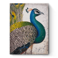 Fabled Bird collection with 1 products