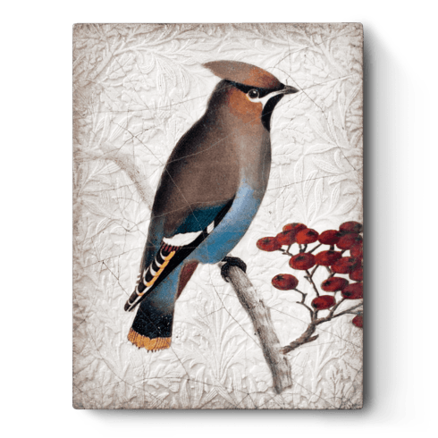 Waxwing  collection with 1 products