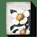 $109.00 White Blossoms