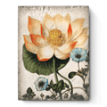 Sacred Lotus  collection with 1 products