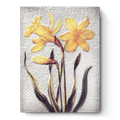 $109.00 Daffodils