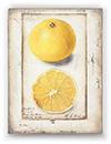 $89.95 Citron