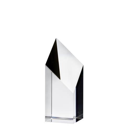 $100.00 Small Award