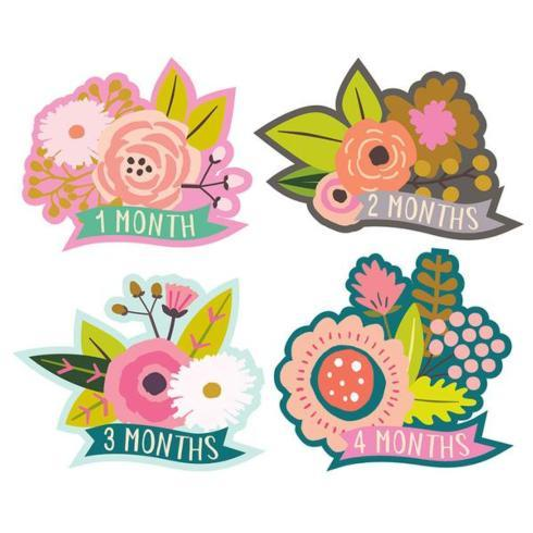 $16.00 Lucy Darling Little Blossom Monthly Stickers