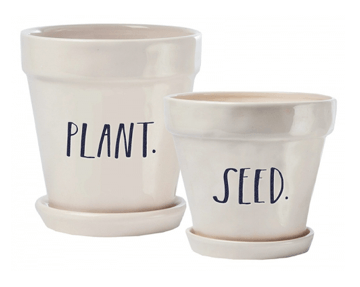 """Magenta Rae Dunn """"Plant + Seed"""" Set of Two Planters"""