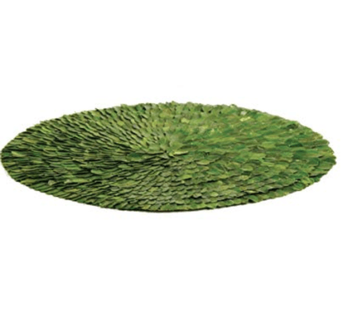 $25.00 Preserved Green Round Placemats