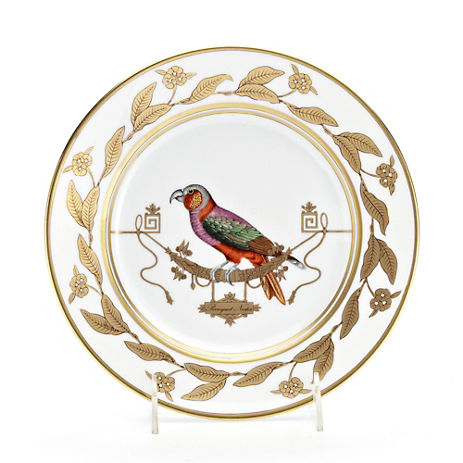 Polka-Dot Penguin Exclusives   Richard Ginori Voliere Perroquet Nestor Dinner Plate $175.00